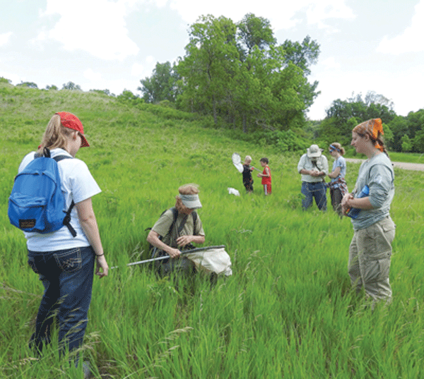 Self-taught entomologist MJ Hatfield (center) catches insects and spiders in a native prairie. Photo by Emily Stone.